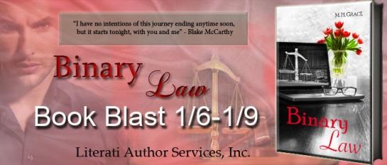 Banner ~Binary Law